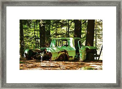 Framed Print featuring the photograph What A Find... by Al Fritz