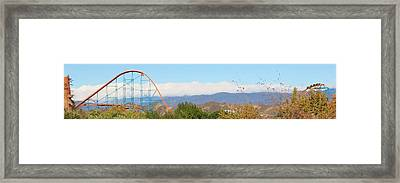 What A Ride Framed Print by Michelle Cassella