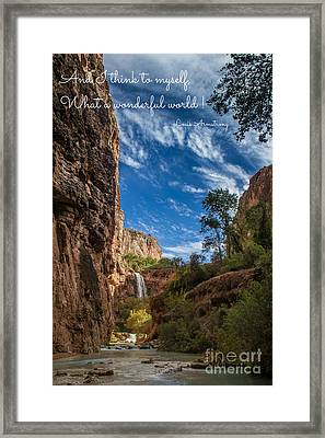 What A Wonderful World Framed Print by Jim McCain