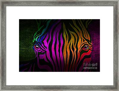 What Are You Looking At 2 Framed Print by Peter Piatt