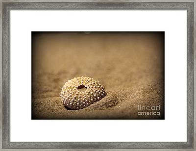 What Becomes Sand Framed Print