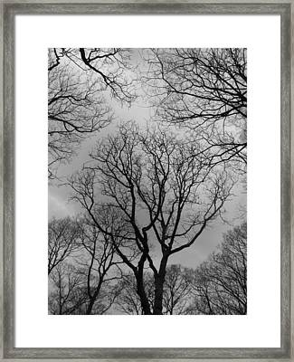 What Can You See Framed Print