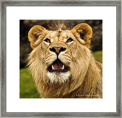 What The ... ? Framed Print