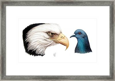 Framed Print featuring the drawing What by Danielle R T Haney