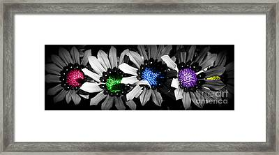 Framed Print featuring the photograph Colored Blind by Janice Westerberg