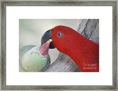 What's Mine Is Yours Framed Print