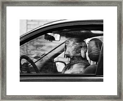 What Is Wrong With You Framed Print by Osvaldo Hamer