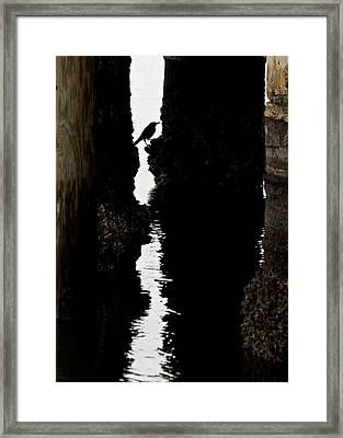 What Lies Beneath Framed Print by Penny Meyers