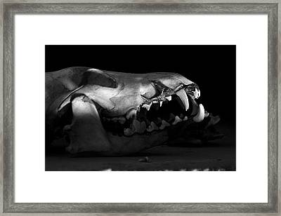 What Once Was Framed Print