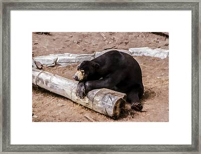 00013 What Should I Do Today Framed Print