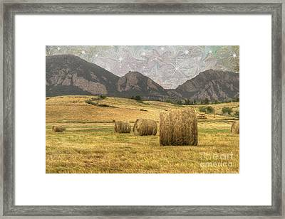 What The Hay Framed Print by Juli Scalzi