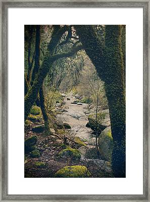 What We Could've Had Framed Print by Laurie Search