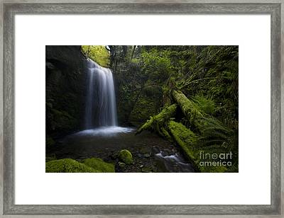 Whatcom Falls Serenity Framed Print by Mike Reid