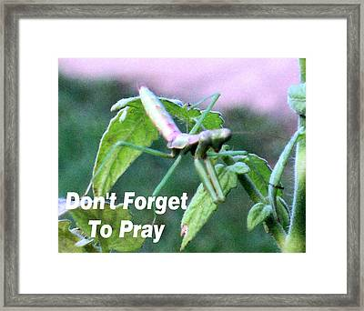 Whatever You Need Framed Print