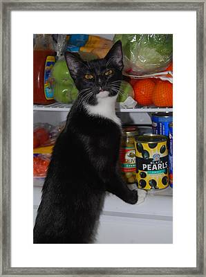 Framed Print featuring the photograph What's For Dinner? by Ramona Whiteaker