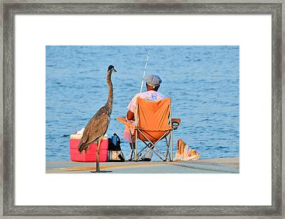 Framed Print featuring the photograph What's For Lunch by Charlotte Schafer