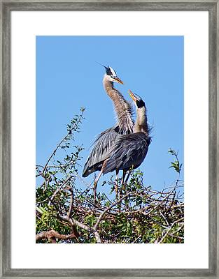 What's For Lunch Mom Framed Print