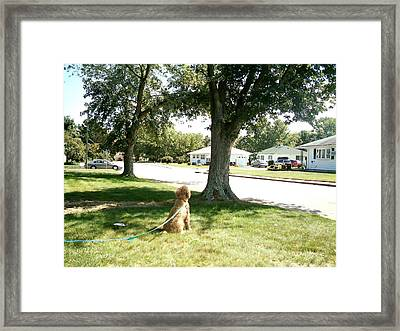 What's It All About Framed Print