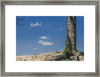 Framed Print featuring the photograph Whats Lies Beyond by Bradley Clay