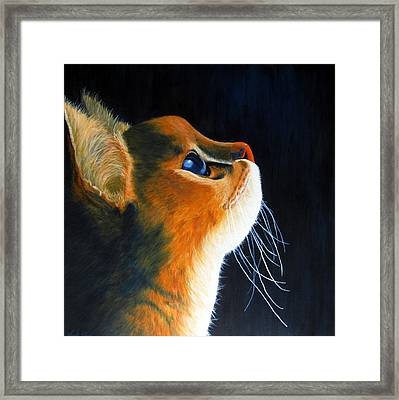 What's Up There Framed Print by Wendi Matson