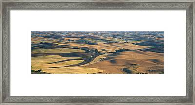 Wheat And Barley, S.e. Washington Framed Print by Panoramic Images