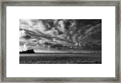 Wheat Black And White Framed Print by Eric Benjamin