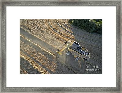 Wheat Harvest In Provence Framed Print by Sami Sarkis