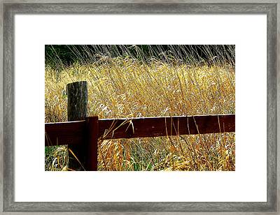 Wheat N' Fence Framed Print by Annie  DeMilo