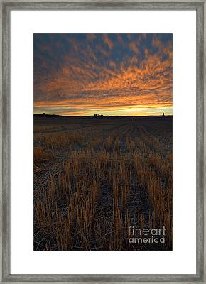 Wheat Stubble Sunset Framed Print by Mike  Dawson