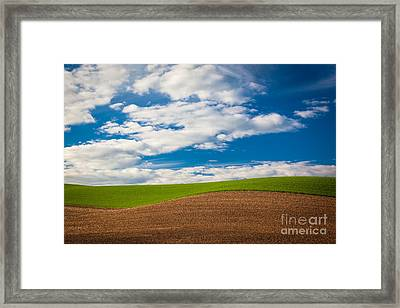 Wheat Wave Framed Print by Inge Johnsson