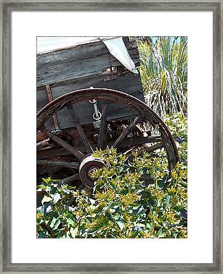 Wheels In The Garden Framed Print by Glenn McCarthy Art and Photography
