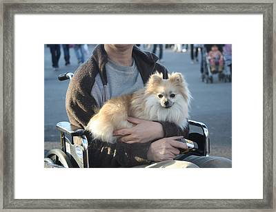 Whele Chair Comfort Framed Print by Joseph Wiegand