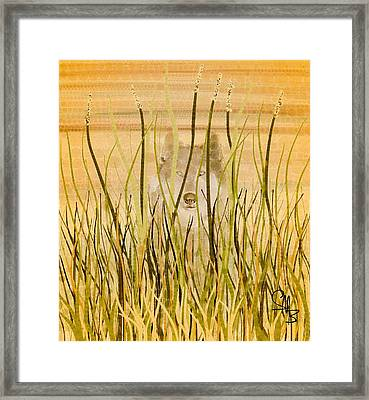 When All Is Done Framed Print by Steven Boland