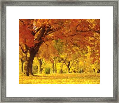 When Autumn Leaves Fall Framed Print