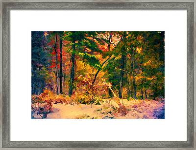 When Fall Becomes Winter Framed Print