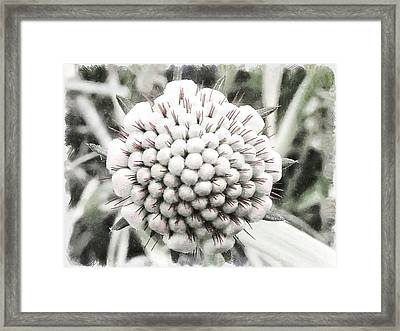 When I'm 64 Framed Print by Steve Taylor