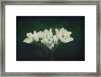 When Love Was Young And New Framed Print