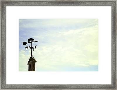 Framed Print featuring the photograph When Pigs Fly by Courtney Webster