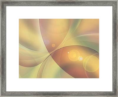 When Small Worlds Collide Framed Print by Ginny Schmidt