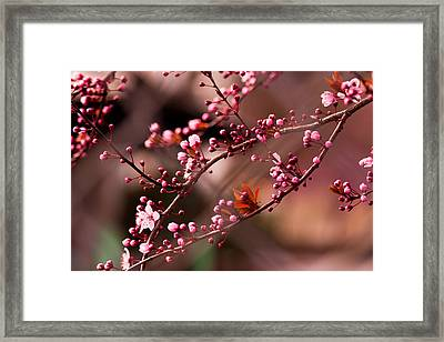 When Two Become One Framed Print