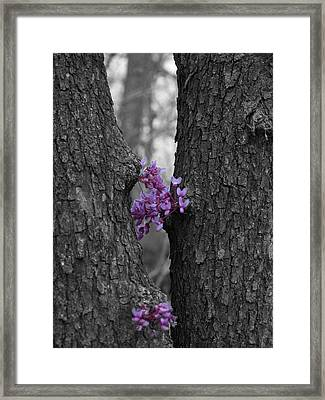 When Two Lovers Meet Framed Print