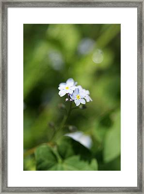When You Look Close Framed Print by Kim Lagerhem