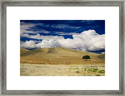 When You Walk My Way Framed Print by Laurie Search