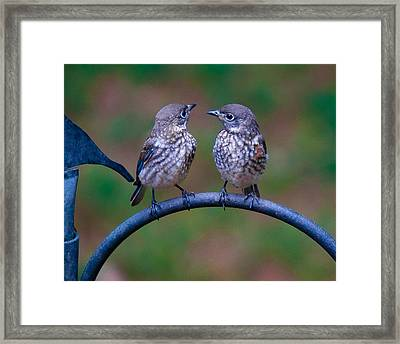 When's Dad Coming Back? Framed Print