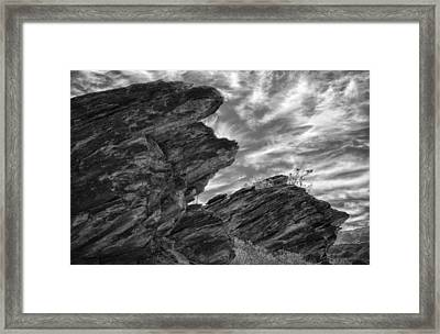 Where Andreas Meets Murray Bw 3 Framed Print by Scott Campbell