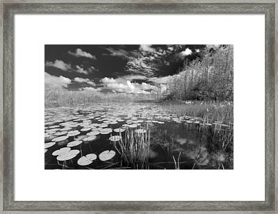 Where Angels Walk Framed Print