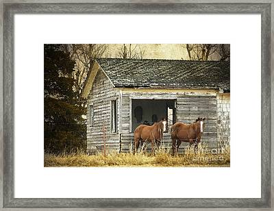 Where Are The People Framed Print by Betty LaRue