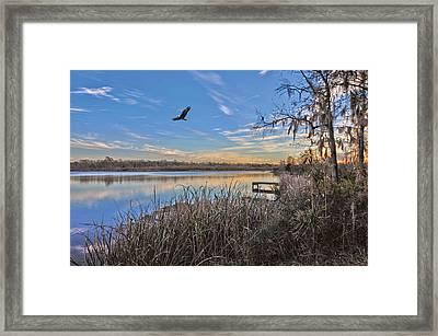 Where Eagles Fly Framed Print by Donnie Smith