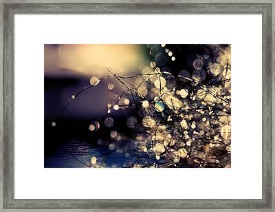 Where Fairies Dream. Framed Print