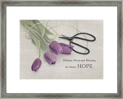 Where Flowers Bloom Framed Print by Kim Hojnacki
